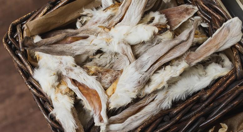 Kaninchenohren mit Fell, lose